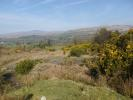 property for sale in 19.5 Acres @ Kealkill, Bantry, Co. Cork, Bantry, Cork