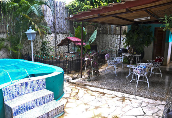 garden & mini pool