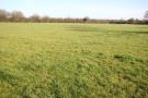 Land in Lot 5 Bury Green, SG11 for sale