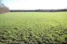 Land in Lot 6 Bury Green, SG11 for sale