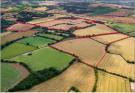 Land at Furneux Pelham Land