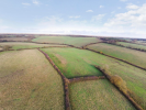Hill Farm and Milk Hall Farm Land for sale