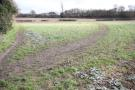Standon Land to rent
