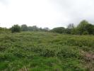 property for sale in Kennelling Road, TN27