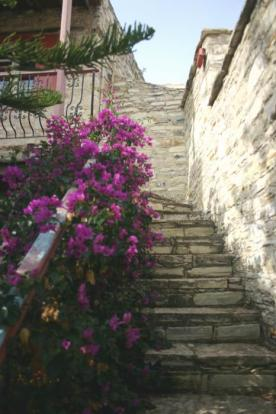Out door stairs to b