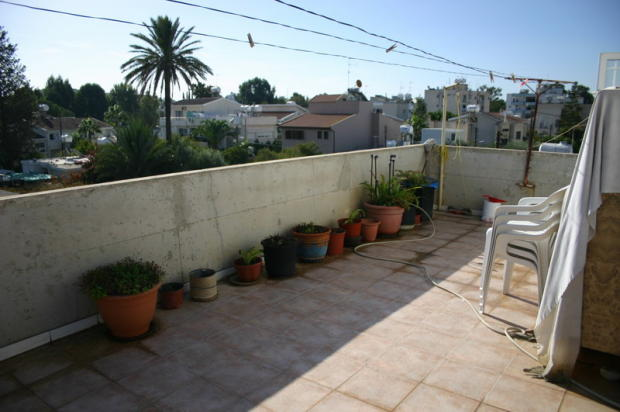 Roof Garden of house