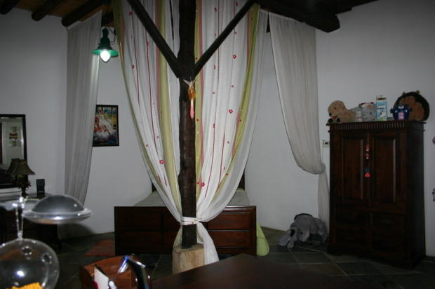 Picture 31