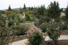 front mature garden