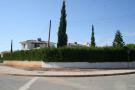 Mature plant fence