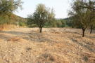 Giolou Land for sale