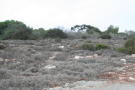 Protaras Land for sale