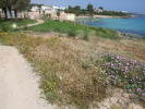 The Seafront Land