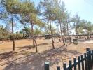 Playground, Park