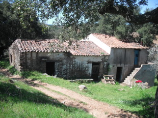 Alto Alentejo Land for sale