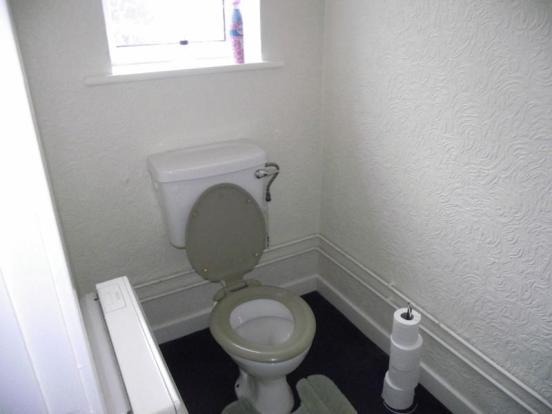 Toilet - Shop