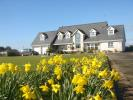 Detached house for sale in Wexford, Kilmore Quay