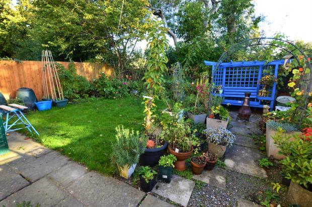 Garden - Early Morn