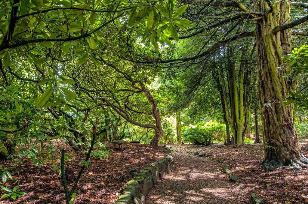 Fosseway_Court_Garden.jpg
