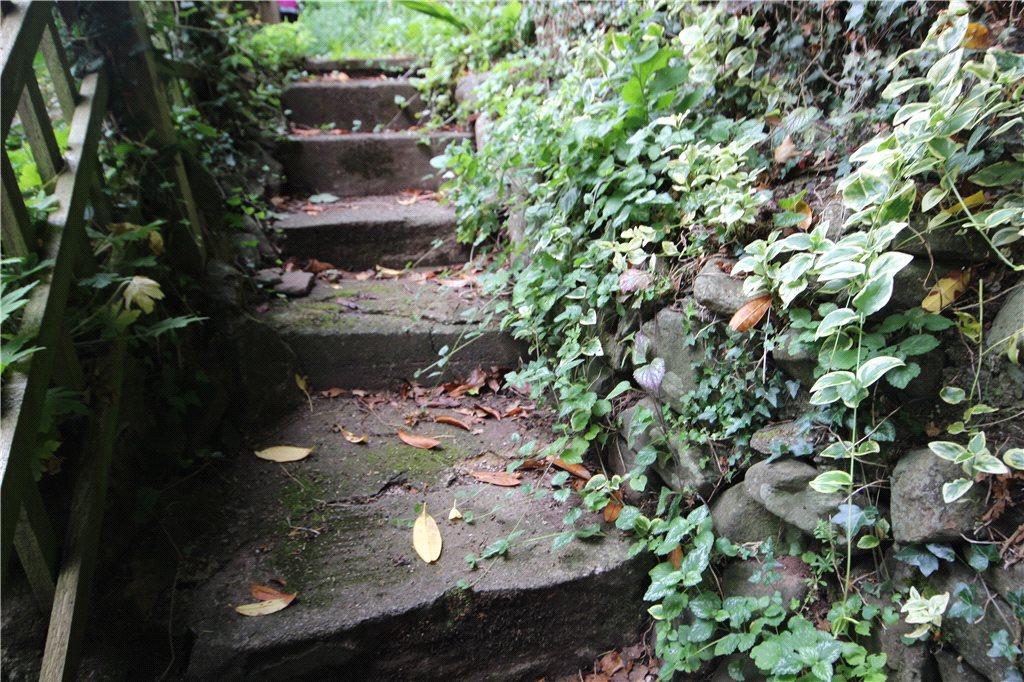 05 Garden