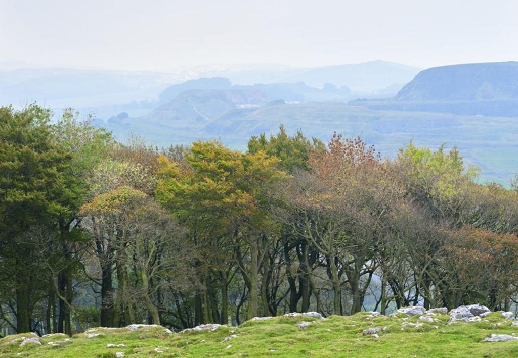 Peak District Autumn
