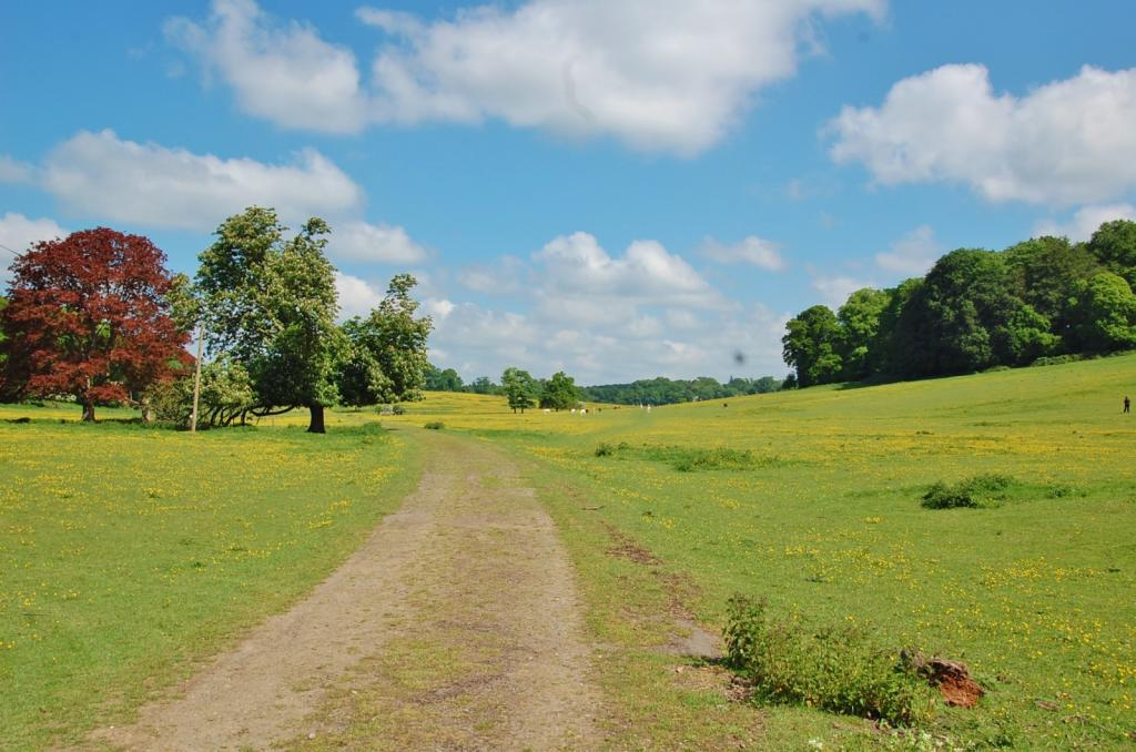 Bulstrode Park