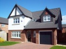 Detached property to rent in Hawthorn Close, Gretna...