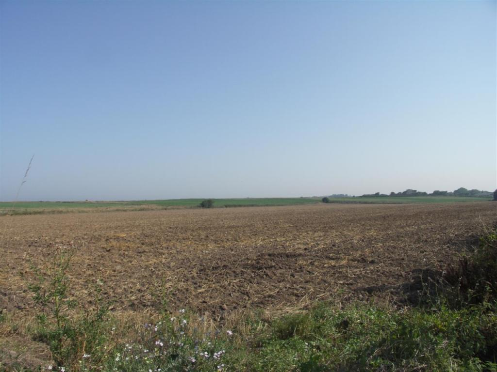 FARMLAND VIEWS TO