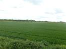 Middle Drove Land for sale
