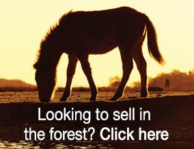 Get brand editions for Spencers of the New Forest , Brockenhurst