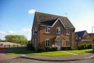 3 bed semi detached property for sale in Gladiator Close, Wootton...