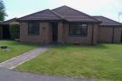 Bungalow for sale in Parkers Close, Chatteris...