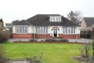 Bungalow in Icknield Way, Luton, LU3