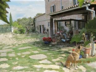 Equestrian Facility property for sale in Istria, Svetvincenat