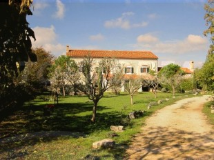 Equestrian Facility property for sale in Istria, Svetvincenat