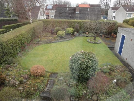 Elevated rear garden