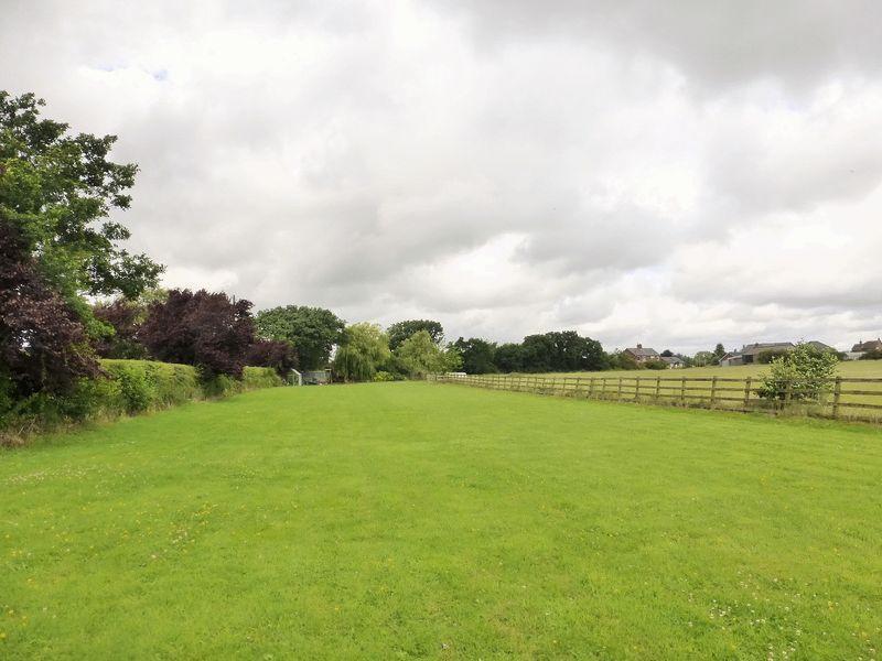 Rear Field