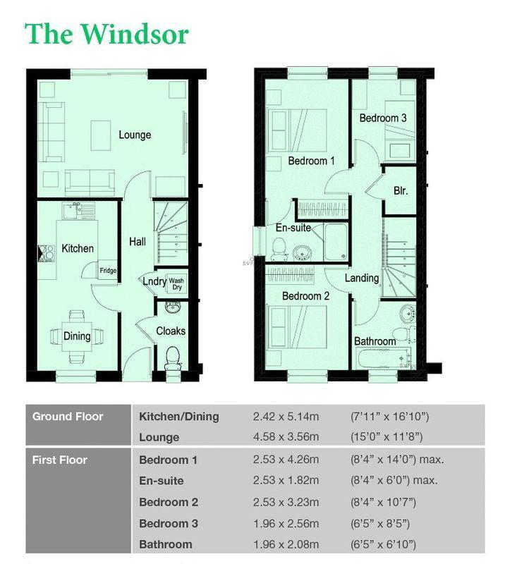 The Windsor Fl...