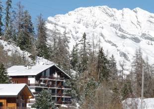2 bedroom Apartment for sale in Valais, La Tzoumaz