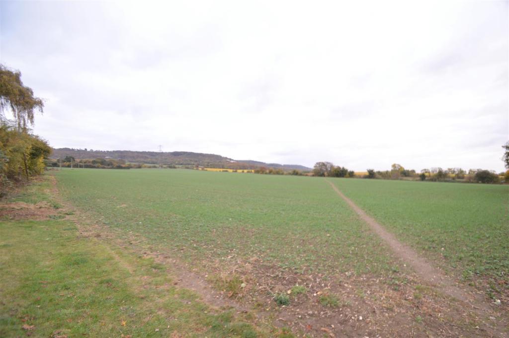 View of Land.JPG
