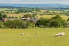 Lot 2 Farm Land