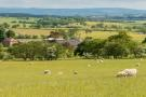 Farm Land in Lot 1 - Barnhill Farm for sale