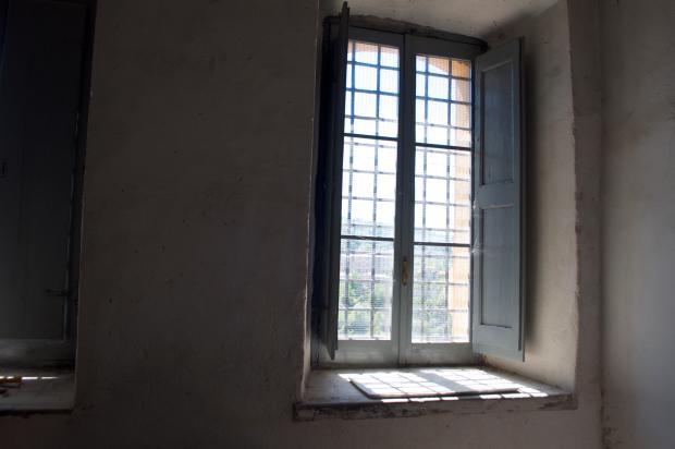 Cellar windows