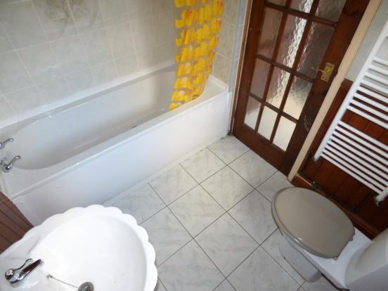 Downstairs Bathro...