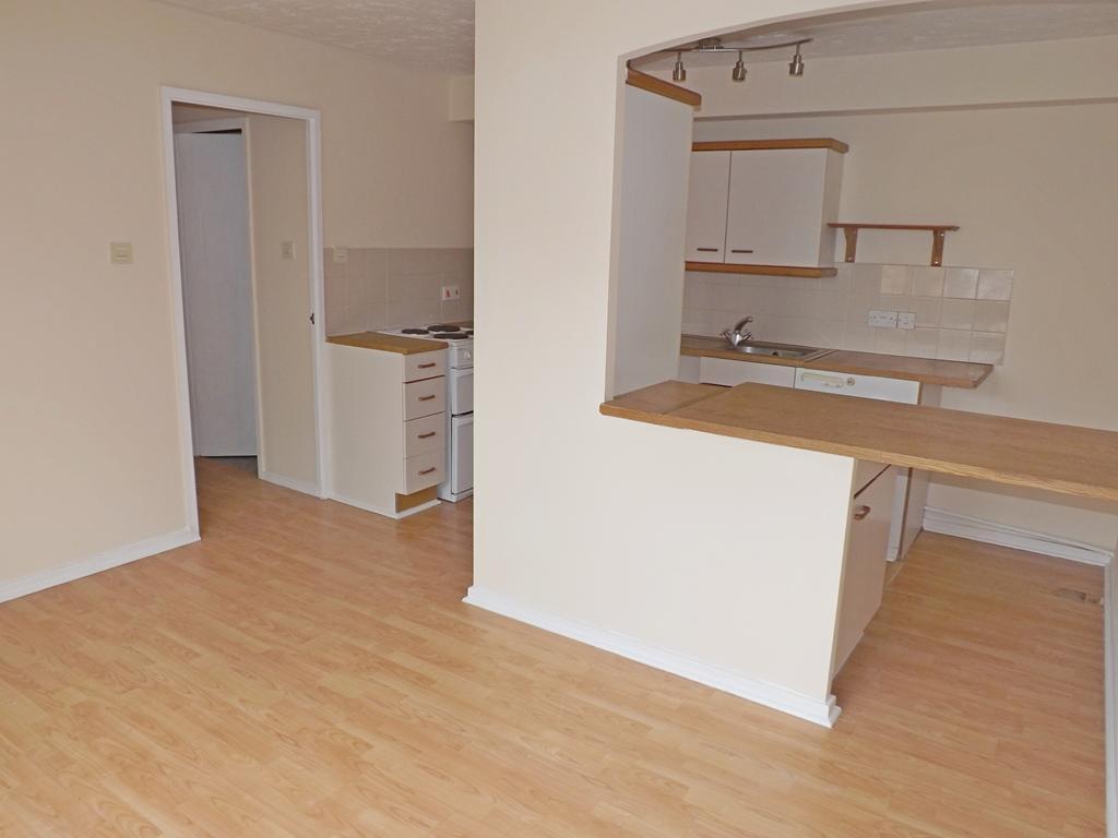 Open Plan Kitchen / Living