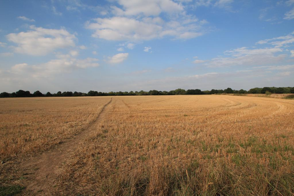 Farmland and footpath to the Alban way