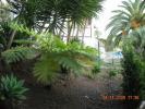 Private lush gardens