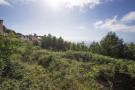 Plot for sale in Funchal, Madeira
