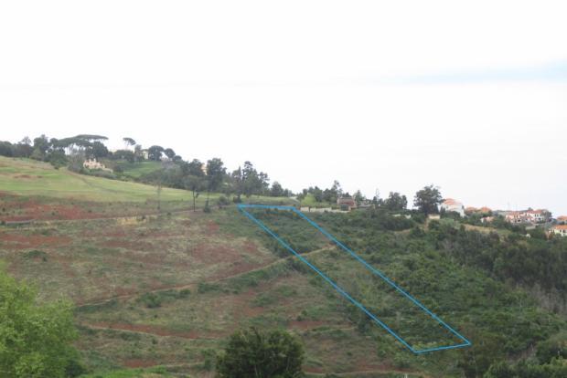 P15, near Casa Velha