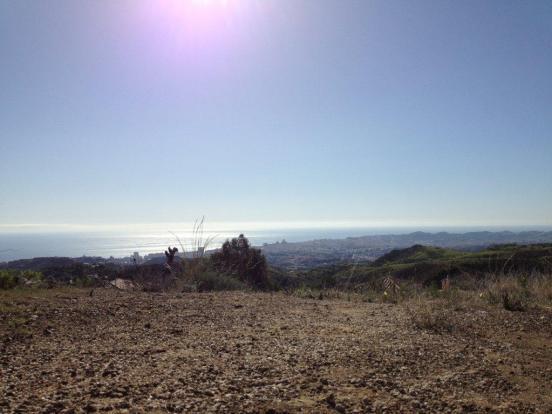 Plot views