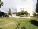 gardens & property